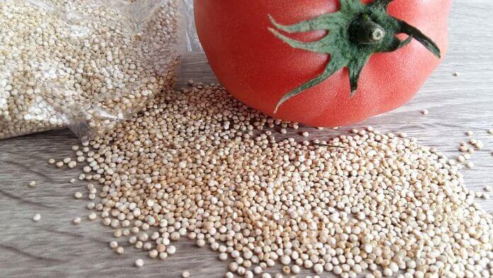 quinoa weight loss